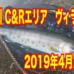 神流川CRエリアの釣行動画