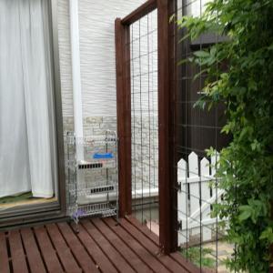 ◆■モッコウバラ誘引フェンスをデッキに設置しました~その1■◆