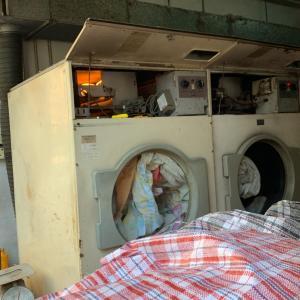 香港洗濯屋