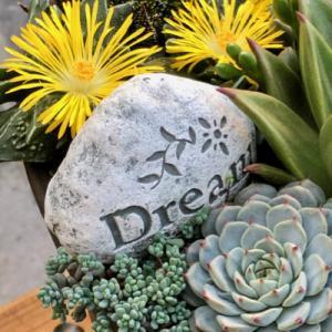 黄色の花が映える寄せ植え鉢・可愛いビオラ