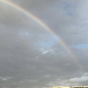 久しぶりに見れた虹