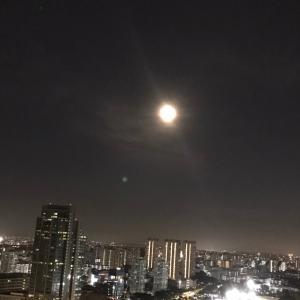 綺麗な月と久しぶりのビュッフェ