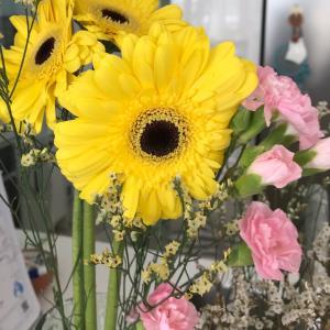 今週のお花とzumbaと。