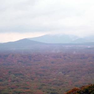 奥入瀬・十和田湖ポタリング