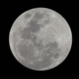満月が今年一番大きく見えるスーパームーンですよ!