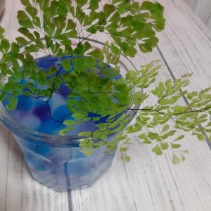 ◇ ◇ お花を生けてみませんか…♪