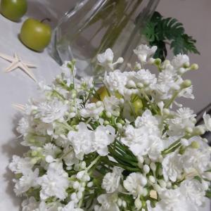 ◇◇ オススメの花材のご紹介です!