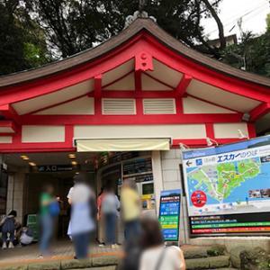 2019ローカル線で行く夏の江ノ島、横浜ツアー_3