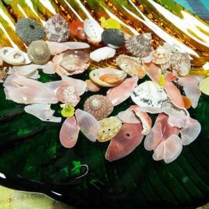 貝殻の歌。長崎港の朝・昼・夕。