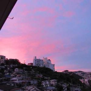 バラ色の景色、バラ色の人生。内村さん泣くなへたるな・・・。