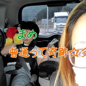 DFKと静岡へ検査入院