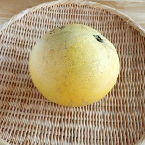 晩白柚と大根のサラダ