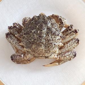 栗蟹(くりがに)