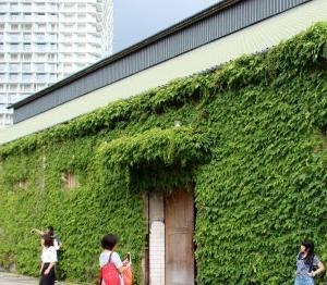 崋山1914文化創意産業園区 日本統治時代の面影が残るレトロな街並み