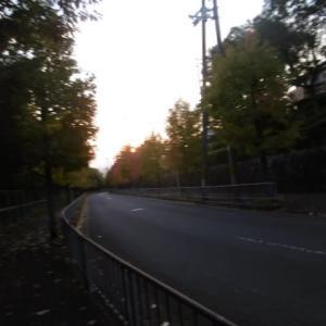 朝夕の散歩