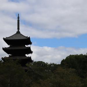 ゴーto京都