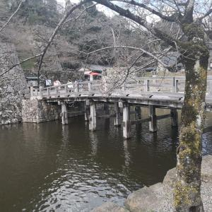 琵琶湖家族旅行 おごと温泉 湯元館 ジャパニーズモダン和室 宿泊記