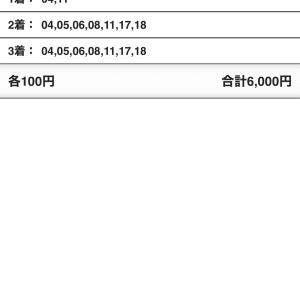 G1エリザベス女王杯(阪神競馬場)2020/11/15