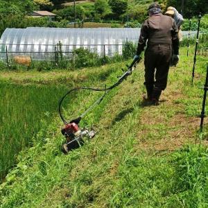 草刈り機のデモ