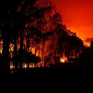 オーストラリア火災に想うこと