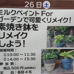 10月26日(日)ホームセンターセキチューの素焼き鉢をリメイクしよう!イベント