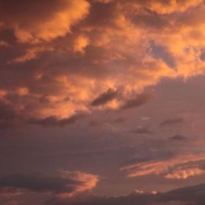 + 秋山を秋山に置き・・・ 幸福の科学アニメ映画『永遠の法』とエジソン  綾瀬はるか主演『ひみつのアッコちゃん』の魔法力  「ヘイトスピーチ」禁止条例の大矛盾