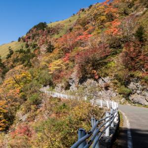 秋のUFOライン(高知・天空の道)