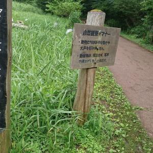 谷戸山公園を本気で攻める。待ってろロブスター?えっアメザリ…