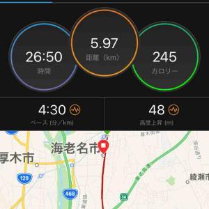 【結果】えびな健康マラソン