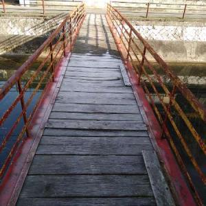未来への懸け橋プロジェクト