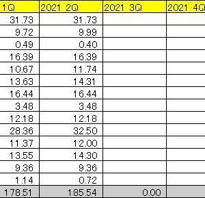 米国株配当 2021年第2四半期 (2Q 2021) ~米国高配当株投資について思うこと~