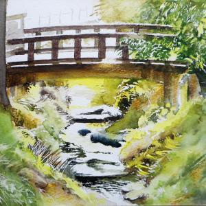 橋の下、覗いてみれば 鎌倉明月川にて