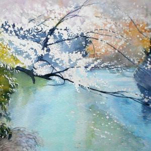 桜が彩る水辺の風景 大岡川プロムナードにて