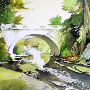 お久しぶりです 鎌倉を流れる滑川
