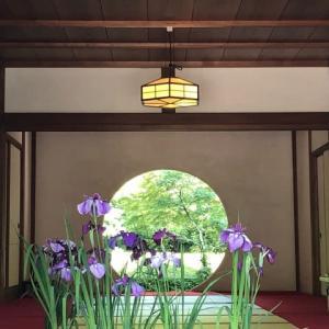 北鎌倉でおさんぽ♪〜 2019.6