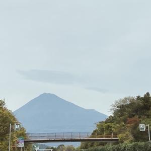あたたかい、静岡〜 2020.12