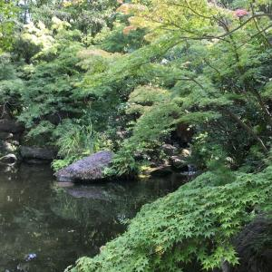 平塚総合公園 散歩!