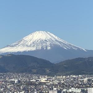 富士山素敵でした!