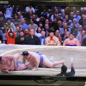 大相撲1月場所 優勝は徳勝龍!