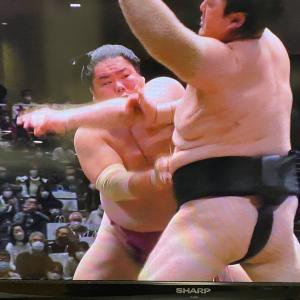 大相撲1月場所 優勝は大栄翔!