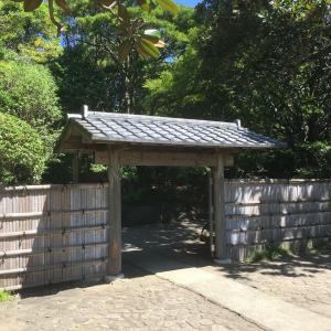平塚総合公園散歩!