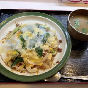 【JGC修行】那覇で沖縄ちゃんぽんを食べて帰るだけの1泊2日ひとり旅