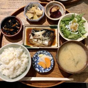 【月額7,770円サブスク】大阪堀江「しみず」は一人暮らしの人にとってマジで最強の食堂!