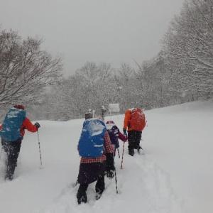 2020年2月6日(木) マキノ高原で、予想外の雪におおはしゃぎ!