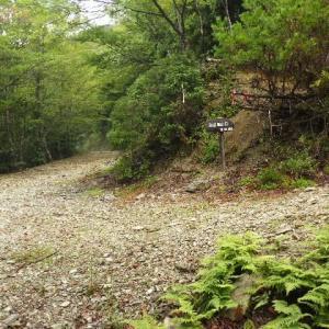 2021年9月9日(木) 迷岳の神秘的な二重山稜を歩く