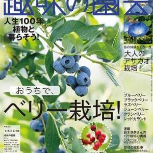 【趣味の園芸7月号 明日6/19(金)発売!】