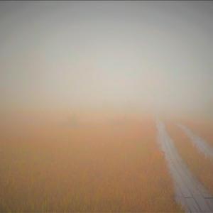 霧の尾瀬、上田代・・・御池からの裏燧林道を登って現れる 大きな上田代、