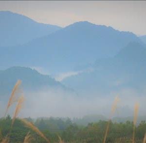 南会津の高杖、約1000mからの望む朝霧です。