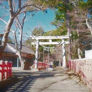 近隣散策・・・麻賀多神社と大杉!!!