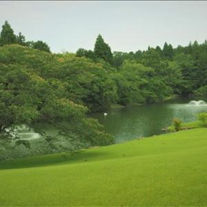 近隣散策、今週はやっと天気が回復するようです。 今回は美しい庭園、昔は・・・